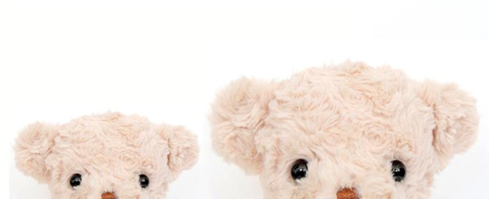 Um par de urso fofos em um fundo branco
