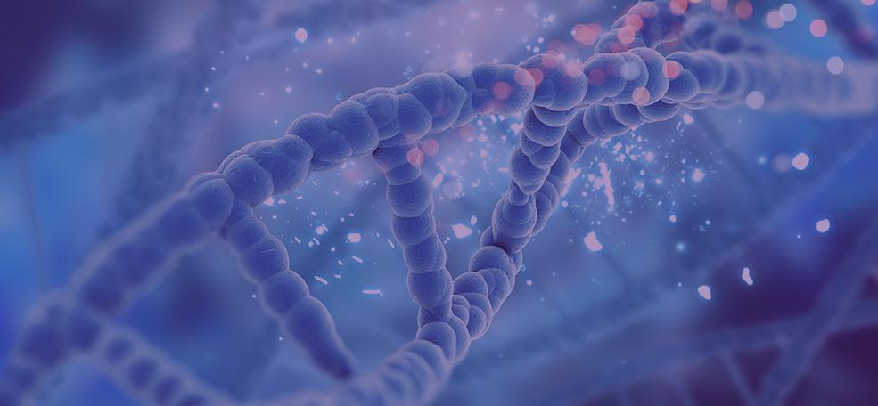 DNA de perto